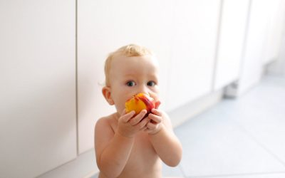 WHAT IS BABY-LED WEANING?