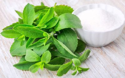 STEVIA: WHICH STEVIA IS BEST?